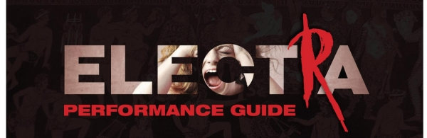 Electra Performance Guide Header.jpg