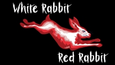 White Rabbit Red Rabbit 2.jpg