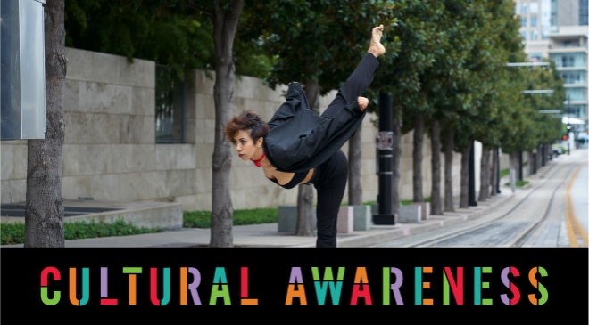Dallas Black Dance Theatre - Cultural Awareness