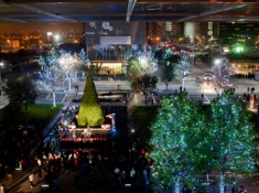 tree-lighting-4.jpg