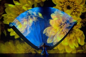 6 Fan with Flower Projection.jpg