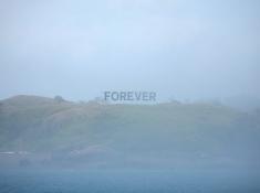 """""""Forever"""" by Alicia Eggert"""