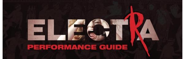Electra Performance Guide Header.jpg