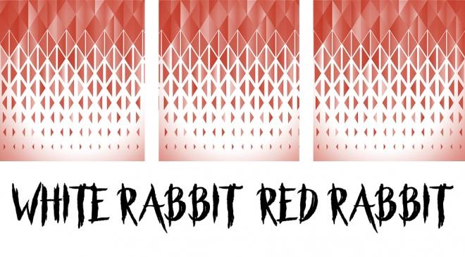White Rabbit Red Rabbit.jpg