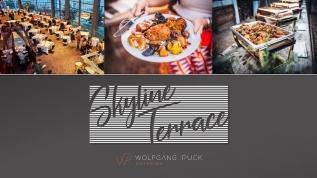 Skyline_Terrace_header_101619.jpg