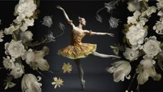 Ballet al Fresco- TBT 660x365.jpg