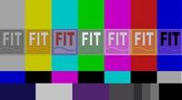 Virtual-FIT-logo---David-Meglino.jpg
