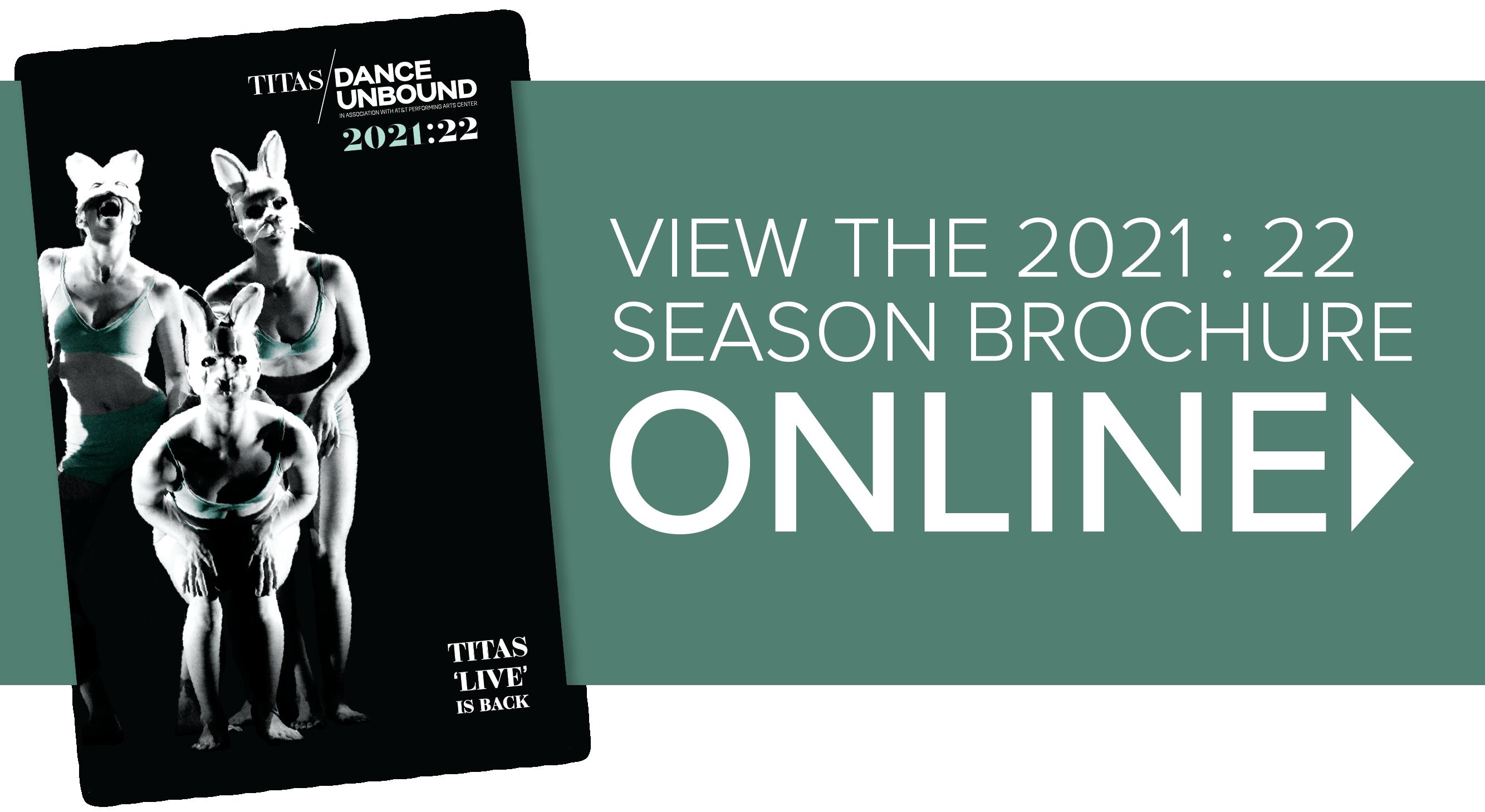 TTS2100_BrochureAccessGraphic.png